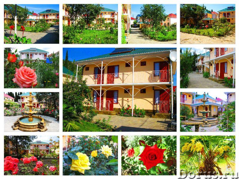 Отдых и цены в Алуште Канака Пансионат Орхидея рядом с морем - Гостиницы - Орхидея - пансионат в кур..., фото 2